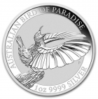 1 oz victoria's riflebird bird of paradise